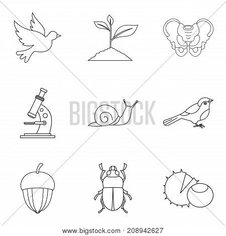 Flier icons set. Outline set of 9 flier vector icons for web isolated on white background
