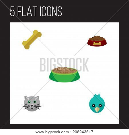 Flat Icon Animal Set Of Sparrow, Osseous, Rabbit Meal And Other Vector Objects