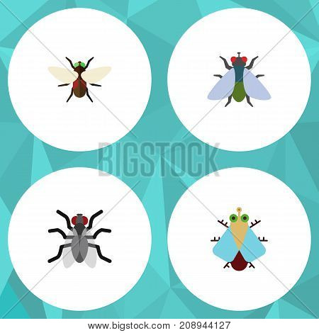 Flat Icon Buzz Set Of Gnat, Fly, Bluebottle And Other Vector Objects