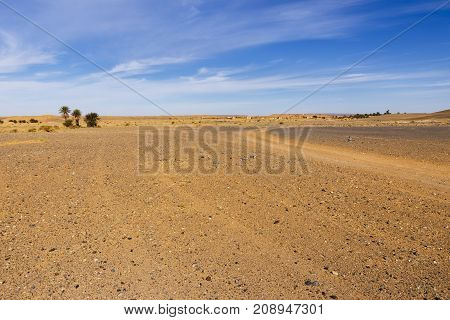 the landscape in the Sahara desert Morocco
