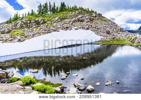 Hiker Pool Reflection Summer Artist Point Mount Baker Highway Pacific Northwest Washington State Snow Mountain Grass Trees