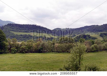 Beautiful gorge among the mountains covered with green vegetation and trees in the spring