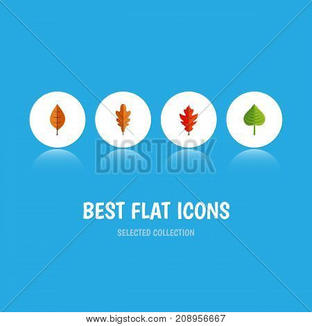 Flat Icon Leaves Set Of Foliage, Frond, Linden And Other Vector Objects