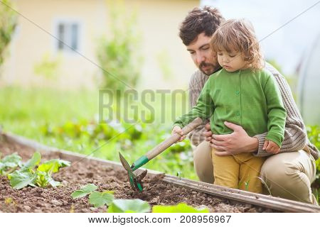 Father and child cutivating ground in garden bad in spring. Family having fun. Active leisure.