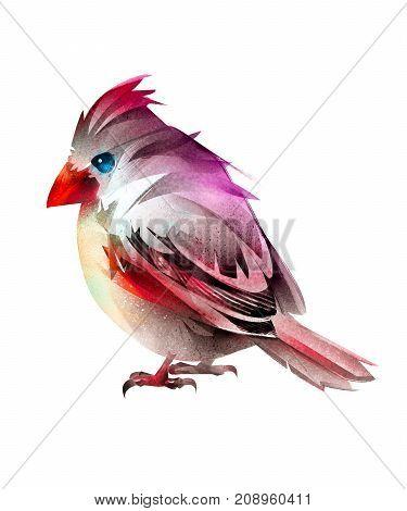 art sitting bird cardinal. Isolated stylized sketch.