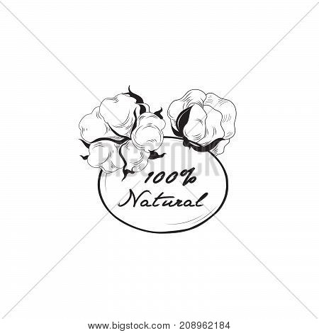 Cotton label. Natural material sign with cotton flower boll. Floral frame