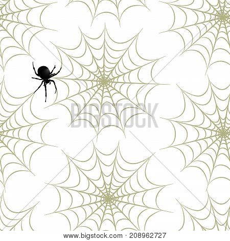 Halloween seamless pattern. Holiday background with spider, web