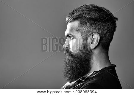Bearded Man In Studio