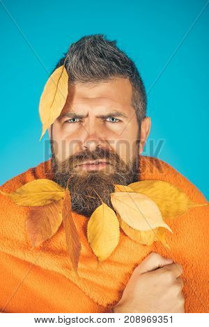 Leaves Beard At Barber And Hairdresser.