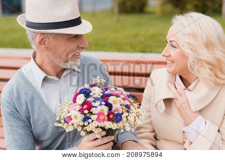 Two pensioners are sitting on a bench in the alley. An elderly man gives a woman flowers. She is delighted with the gift