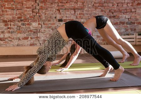Yoga for kids. Healthy children lifestyle. Gymnastic development, teenage sport. Young girls stretching in studio, gym background with free space, health concept