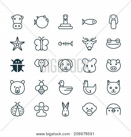 Animal Icons Set. Collection Of Goose, Bumblebee, Kine And Other Elements