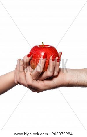 Man and woman hands holding forbidden fruit of sin red apple isolated on white