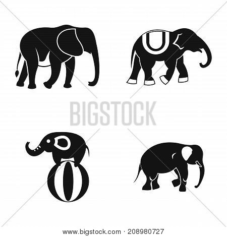 Elephant icon set. Simple set of elephant vector icons for web design isolated on white background