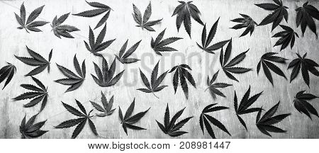 Leaves Of Marijuana, Cannabis On A Wooden Background, Beautiful Background, High Quality. Green Leav