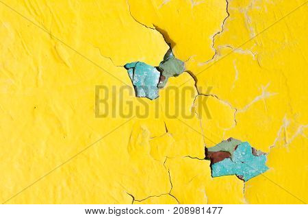 Texture background with texture of peeling paint.  Yellow and blue texture peeling paint on the old rough texture surface. Yellow peeling paint -texture background. Peeling paint background