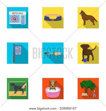 Walking with a dog, a vet clinic, a dog haircut, a puppy bathing, feeding a pet. Vet clinic and pet care set collection icons in flat style vector symbol stock illustration .