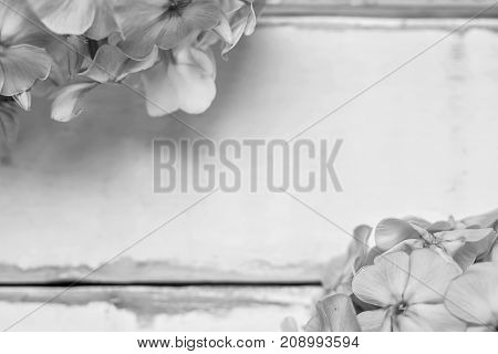 Flowers on a wooden table black and white poster