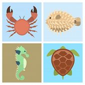 Vector set of cute sea animals creatures characters. Cartoon ocean underwater aquarium life water collection graphic aquatic tropical beasts poster