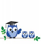 Owl teacher and pupils sat on a tree branch with copy space poster
