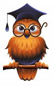 Wise owl wearing a square academic cap and glasses poster