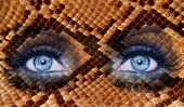 blue fashion makeup eyes snake skin texture animal wildlife metaphor poster