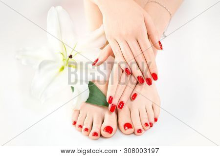 Manicure and Pedicure in beauty salon. Spa, skin care, moisturizing concept. Healthy Female hands and legs with beautiful nails. Soft skin, skincare concept. Beauty nails, varnish