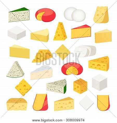 Vector Different Types Of Cheese Detailed Icons