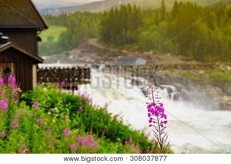 Formofossen Powerful River Waterfall On The Sanddola River Along Road E6. Grong Municipality, Nord-t