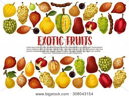 Tropical Exotic Fruits Vector Banner With Borders Of Asian Durian, Quince And Pomelo, Salak, Tamarin