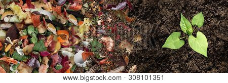 Compost And Composted Soil Cycle As A Composting Pile Of Rotting Kitchen Scraps With Fruits And Vege
