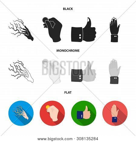 Vector Illustration Of Animated And Thumb Logo. Set Of Animated And Gesture Stock Symbol For Web.