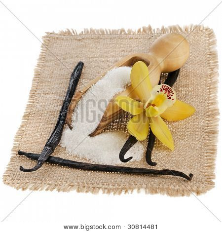 vanilla orchid pod and aromatic vanilla sugar on sackcloth  isolated on white background