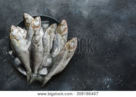 Bluefish With Ice Cube In Dish On Black. Fish Pattern With Space For Text.