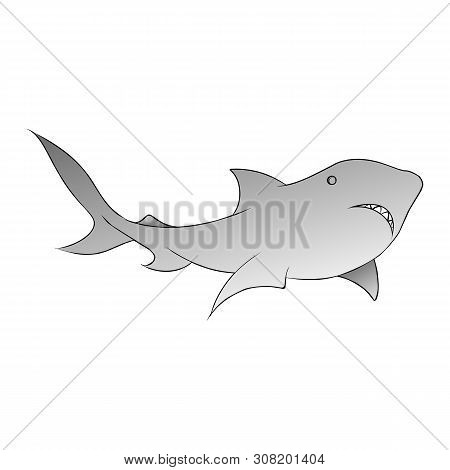 Shark Illustration. Shark Illustration Vector. Shark Illustration Art. Shark Illustration Icon. Shar