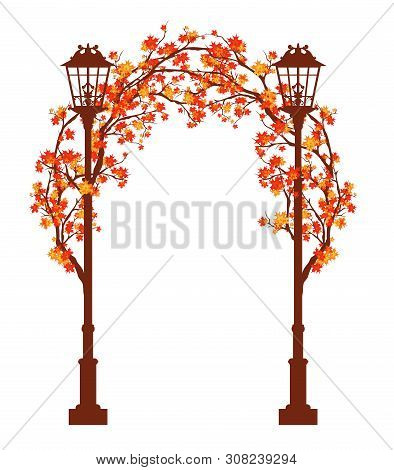 Streetlights Among Autumn Maple Tree Branches Forming An Arch - Fall Season Archway Entrance Vector