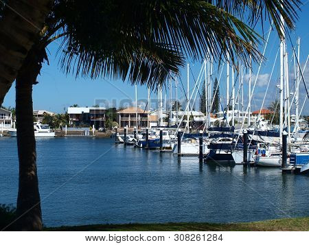 Boats Berthed At A Tropical Waterfront Marina With Palm Tree And Blue Sky Backdrop. Safe Haven For S