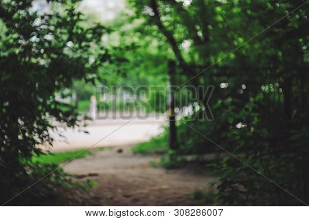 Defocused View On Urban Street From Forest Between Trees. Exit From Dark Forest In Roadway. Bokeh Ba