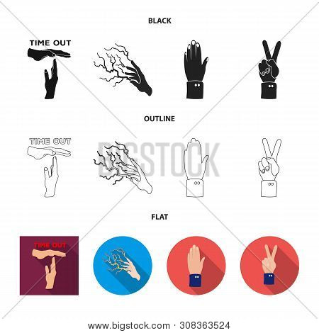 Vector Design Of Animated And Thumb Logo. Collection Of Animated And Gesture Vector Icon For Stock.