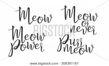 Modern Calligraphy Of Ink Meow Letters . Stylish Typography Inscription Poster With Different Handwritten Meow Power, Never And Purr Elegance Text. Graphic Design Flat Illustration poster