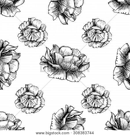 Large Ellegant Seamless Pattern With Roses. Botanical Texture Big Flowers