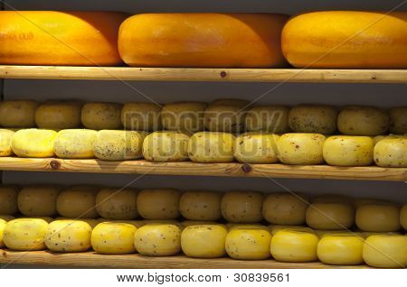 Cheese on shelves in store