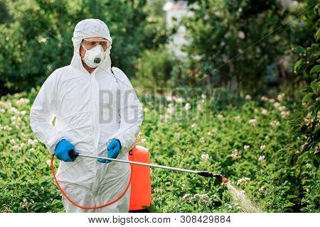 Worker Sprays Organic Pesticides On Plants. Farmer