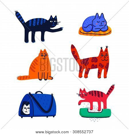 Pet Grooming Concept. Set Of Cartoon Cats With Different Colored Fur And Markings Standing Sitting O