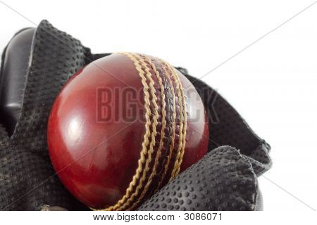 Wicket Keeping Gloves.
