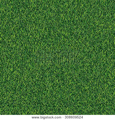 Grass Seamless Realistic Texture. Green Lawn, Field Or Meadow Vector Background. Summer Or Spring Na