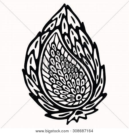 Paisley Nature Folk Art Graphic Design Element. Hand Drawn Nordic Linocut Block Print Motif. Black F