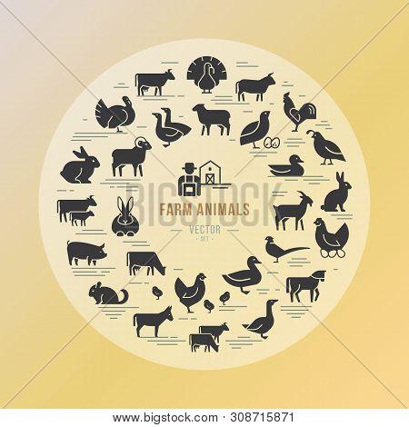 Circular Vector Icon Set In A Flat Style Of Farm Animals Silhouettes. Circular Concept Of Farm Anima