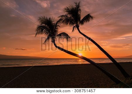 Beautiful Sunset On The Island Of Maui