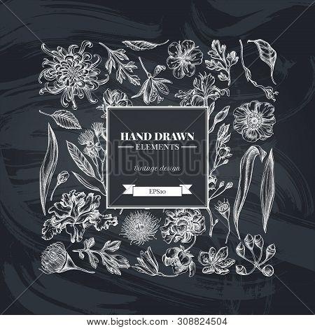 Square Floral Design With Chalk Japanese Chrysanthemum, Blackberry Lily, Eucalyptus Flower, Anemone,
